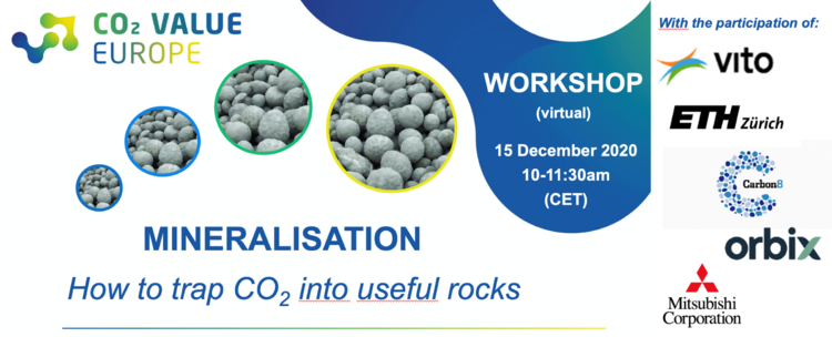CVE Mineralisation Virtual Workshop