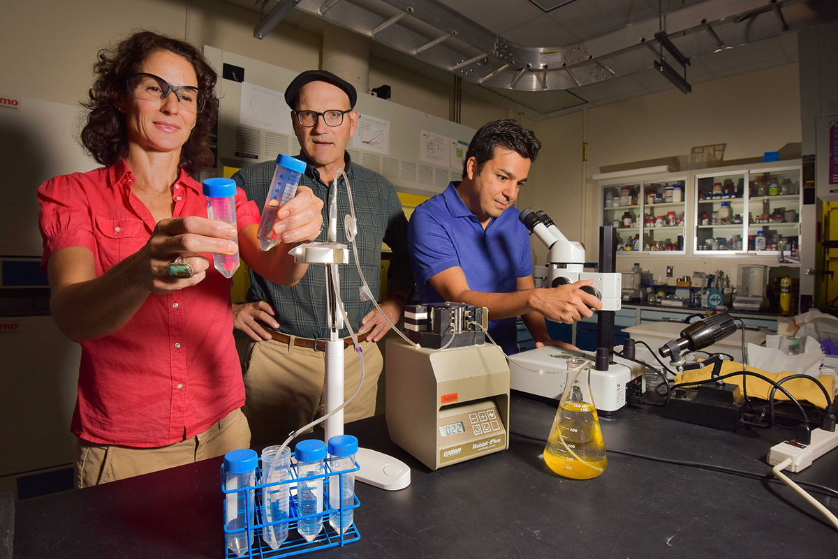 Three Sandia National Labs scientists in their lab
