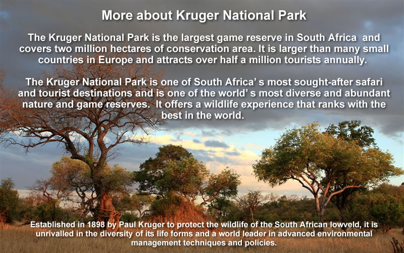 The 2018 ICRPMC conference will be held at the Skukuza Camp in Kruger National Park, South Africa