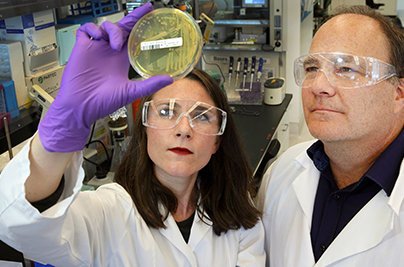 Two scientists in National Lab