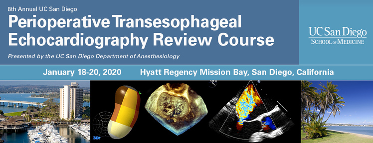 Ucsd Summer Session 2020.8th Annual Ucsd Perioperative Transesophageal