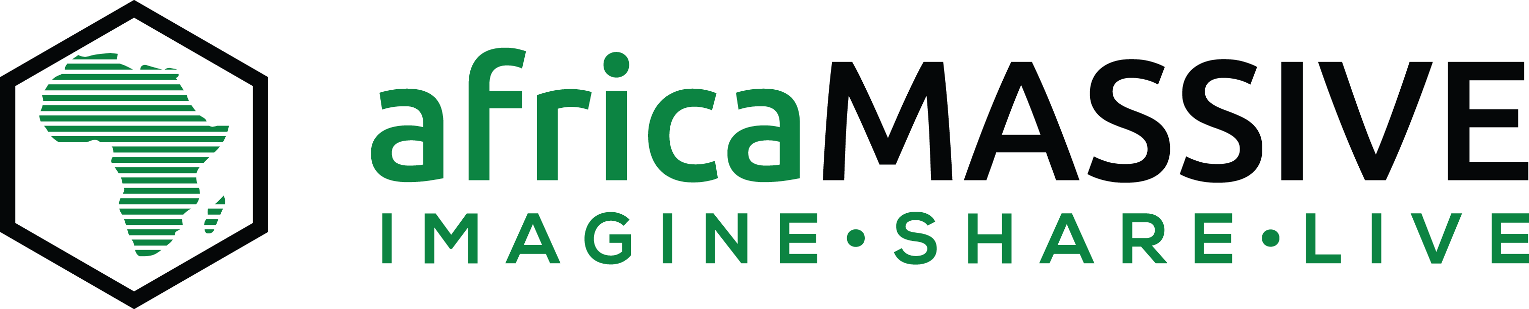 africaMASSIVE Conference Organizers