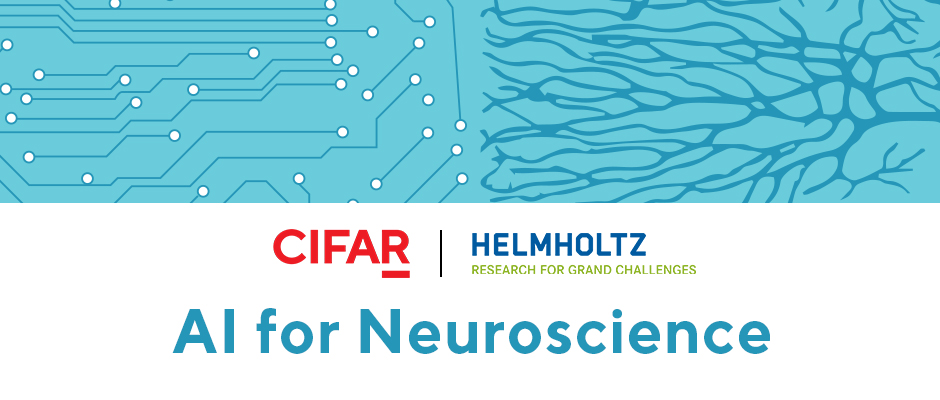 CIFAR-Helmholtz: AI for Neuroscience Workshop