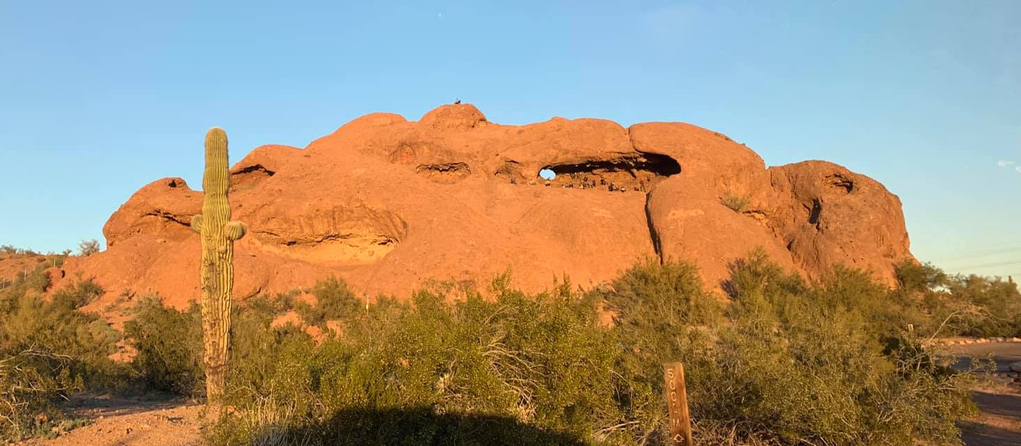 UTO Giving Back: Papago Park Cleanup
