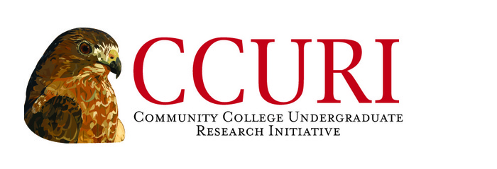 CCURI Active Learning Workshop