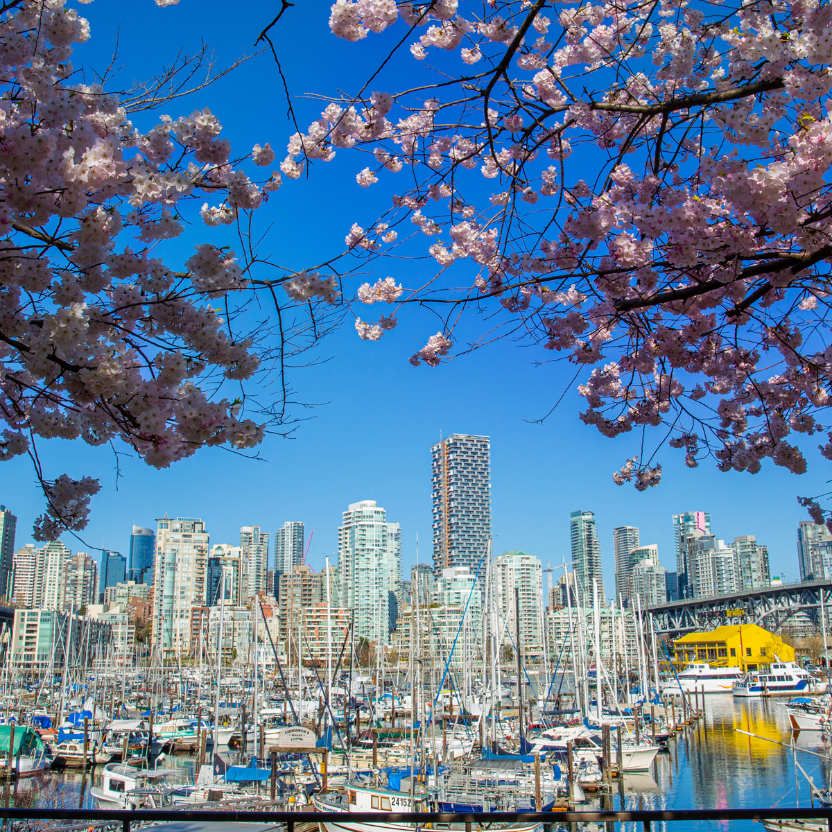 Tourism Vancouver / Vision Photography