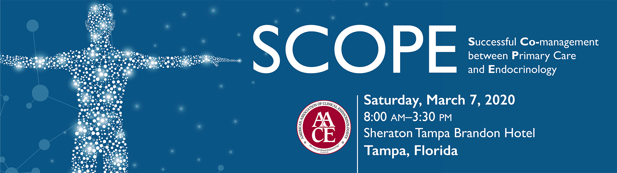 SCOPE: Successful CO-Management between Primary Care and Endocrinology (TAMPA)
