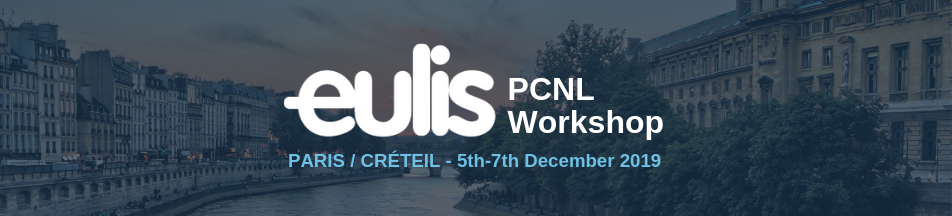 19EULIS PCNL Workshop