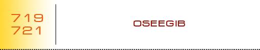 OSEEGIB logo