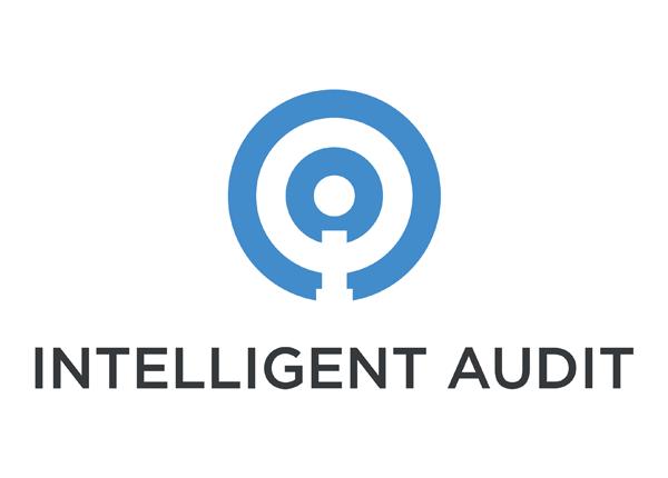 Intelligent Audit / TriumphPay